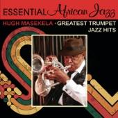 Ziph' Nkomo - Hugh Masekela