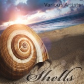 Shells (16 Finest Downtempo, Chillout & Lounge Tracks)