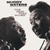 The Real Folk Blues, Muddy Waters
