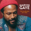 Marvin Gaye: The Albums 1971-1982 ジャケット写真
