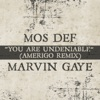 You Are Undeniable (Amerigo Remix) - Single, Mos Def & Marvin Gaye