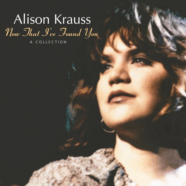 Now That Ive Found You A Collection Alison Krauss CD cover