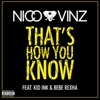That's How You Know (feat. Kid Ink & Bebe Rexha) - Single, Nico & Vinz