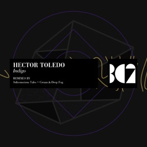 Hector Toledo - Neptune (Original Mix)