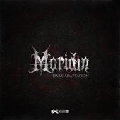Dark Adaptation