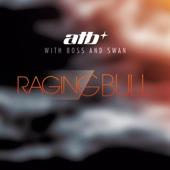 Raging Bull (Remixes) [with Boss and Swan] - EP cover art