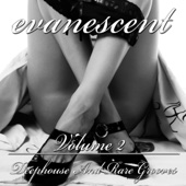 Evanescent, Vol. 2 (Deephouse and Rare Grooves)