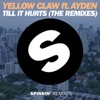 Till It Hurts (feat. Ayden) [LNY TNZ Remix]