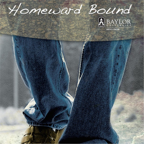homeward bound elaine tyler mays thesis
