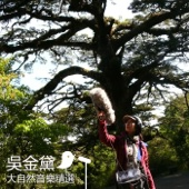 The Best Nature Sounds Music of Taiwan