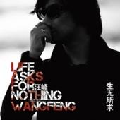 Wang Feng - 爸爸 artwork