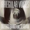 IRREGULAR VOICES feat. 赤飯