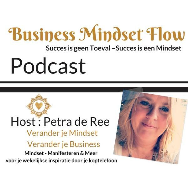 Business MindsetFlow - Succes is geen Toeval Succes is een Mindset