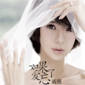 Stephy Qi - 如果愛忘了 (Instrumental) artwork