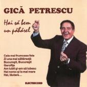 Gică Petrescu - Hai Să Bem Un Păhărel artwork