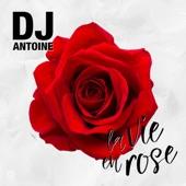 La vie en rose (DJ Antoine Vs. Mad Mark 2k17 Mix) - Single