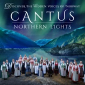 Cantus - Northern Lights artwork