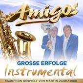 Amigos - Instrumental gespielt von Martin Zagrajsek