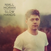 Niall Horan - Slow Hands Grafik