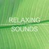Relaxing Sounds - Relax & Sleep Well (Rain, Ocean, Piano Music, New Age Relaxing Music)