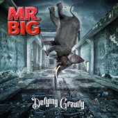 Mr. Big - Defying Gravity artwork