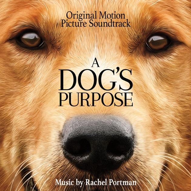 A Dog S Purpose Rachel Portman