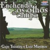 Luiz Marenco & Gujo Teixeira - Enchendo Os Olhos de Campo  arte