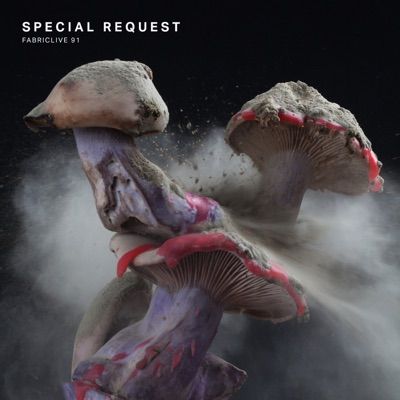 Special Request - FABRICLIVE 91: Special Request