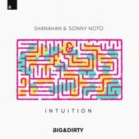 Intuition - Single - Shanahan & Sonny Noto