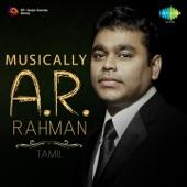 Musically A. R. Rahman - Tamil