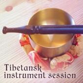 Tibetansk instrument session - Meditera och lugna ner sig, Upplev Buddha energi och harmoni, Reiki, Mantras, Chakras - Buddha Musik Fristad