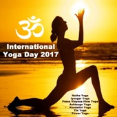 International Yoga Day 2017 (Hatha Yoga, Iyengar Yoga, Prana Vinyasa Flow Yoga, Ashtanga Yoga, Kundalini Yoga, Yin Yoga & Power Yoga) Wipe out All Negativity Inside You