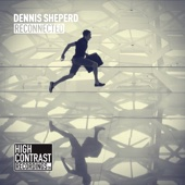 Dennis Sheperd - Reconnected (Extended Mix) ilustración