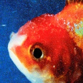 Big Fish Theory - Vince Staples, Vince Staples