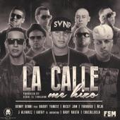 """La Calle Me Hizo (feat. Benny Benni, Farruko, Daddy Yankee, Gotay """"El Autentiko"""", J Alvarez, Baby Rasta, Cosculluela & Ñejo) - Single"""