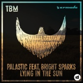 Lying In the Sun (feat. Bright Sparks)