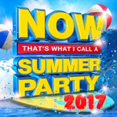 Various Artists - NOW That's What I Call a Summer Party 2017 artwork