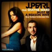 Must Be a Reason Why (Guy Katsav Extended Mix) [feat. Shayne Ward] - Single