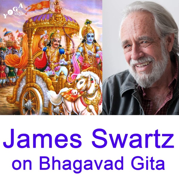 James Swartz  - Vedanta Talks on the Bhagavad Gita
