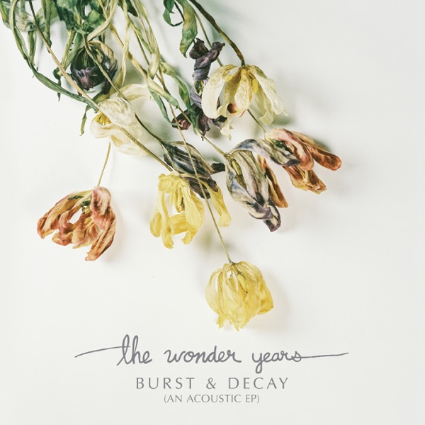 The Wonder Years - A Song For Ernest Hemingway (Single) (2017)
