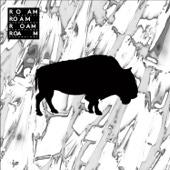 The Roam Compilation, Vol. 2