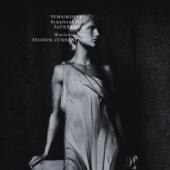 Teodor Currentzis & MusicAeterna - Tchaikovsky: Symphony No. 6  artwork