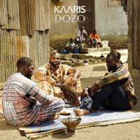 Kaaris - Dozo artwork