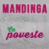 Ce Poveste (feat. Connect-R) - Mandinga