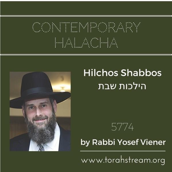 Hilchos Shabbos 5774