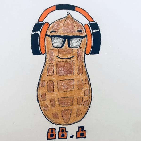Peanut88point8