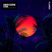 Flames - David Guetta  Sia MP3