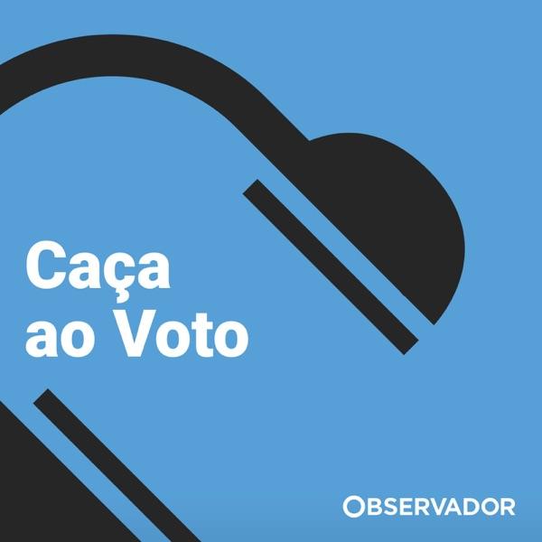 Caça ao voto - Observador
