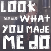 Look What You Made Me Do - Tyler Ward
