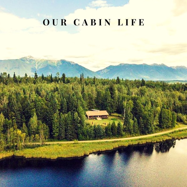 Our Cabin Life
